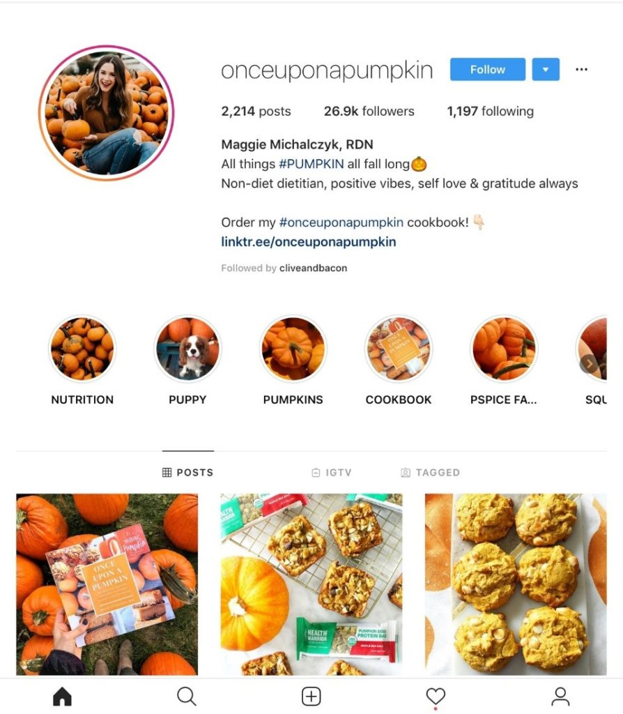 insta page of influencer