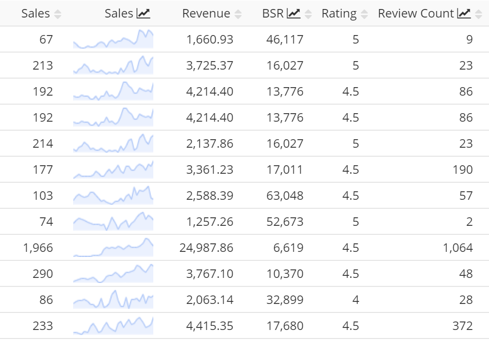 Amazon sales revenue