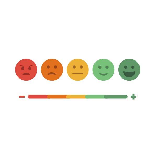 Conduct customer surveys